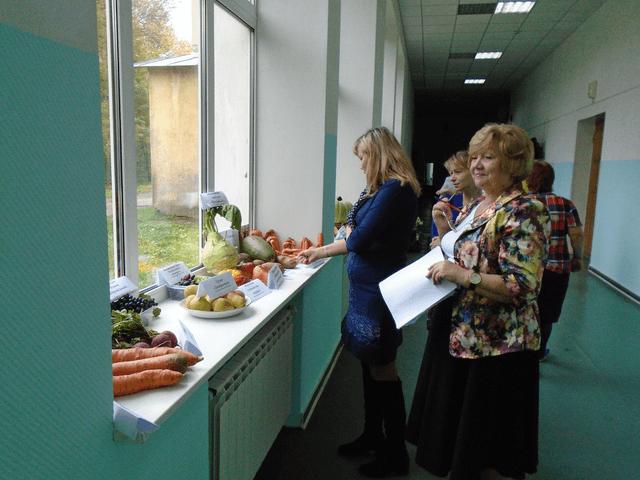 Конкурс «Золотой урожай-2016» в Слободском
