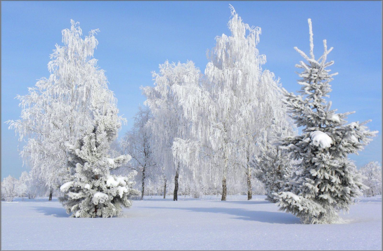Завтра на всей территории Кировской области ожидается оттепель. Когда будет мороз в Слободском